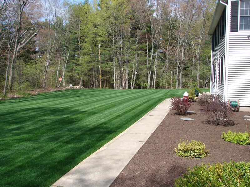 Beau Sod Quality Lawn In RI