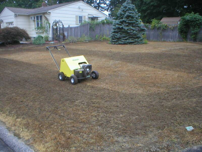 Image result for Setting Soil lawn